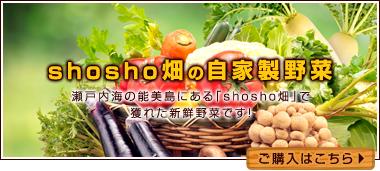 shosho畑の 自家製野菜