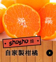 shosho畑 自家製柑橘